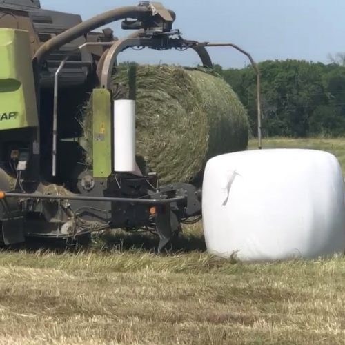 140 bales of first cutting May 2020 haylage bales, #0613