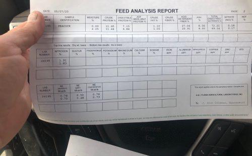 1200 bales of premium Spring 2020 wheat hay, #57